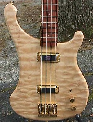 Basses Loaded Electric Bass Guitar Review
