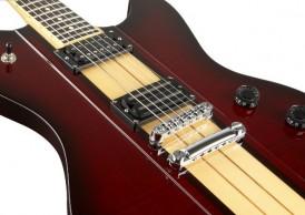 Donegan Schecter Guitar
