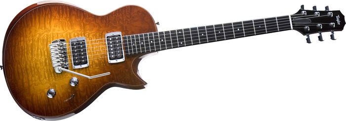 Taylor Solidbody Standard Tremolo Hands-On Review