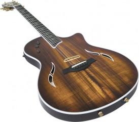 Taylor Guitar T5 Classic Guitar