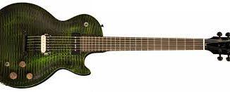 Gibson Les Paul BFG Gator