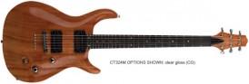 Carvin CT324 Guitar